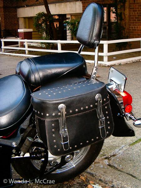 Volusia's saddlebags